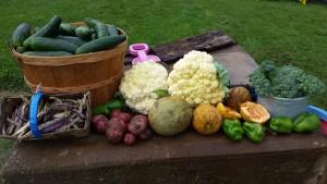 Garden bounty!